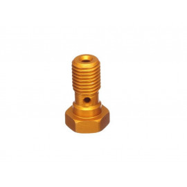 ABM Hollow Screw Alu M10x125 (gold)
