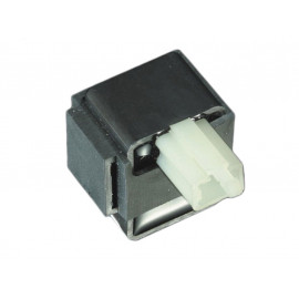 P&W Blink Relay electronic (small Connector with 2 Pins) 12V 4 x 21W